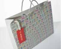 Custom Paper Shopping Bags