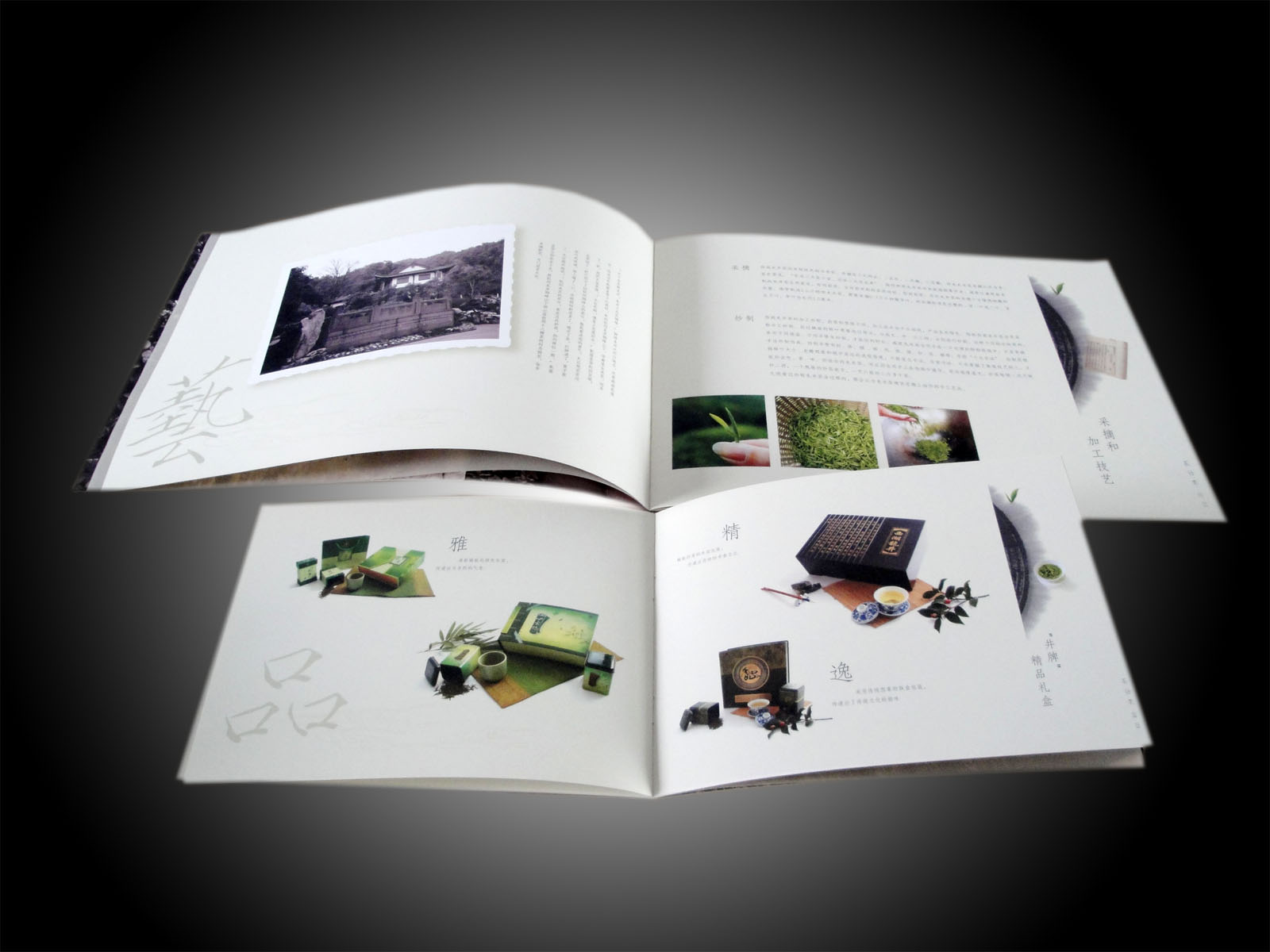 Product Booklet Printing